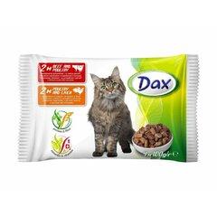DAX kapsičky pro kočky 4 x 100g